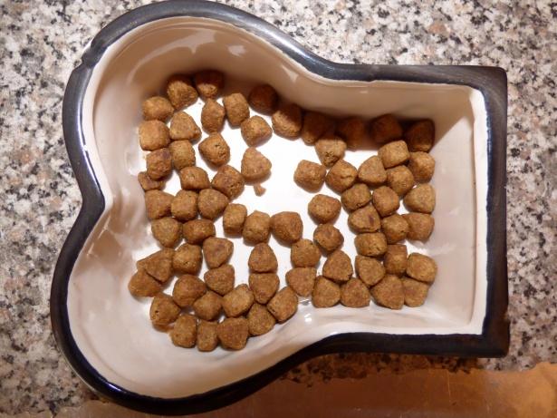 cuenco de alimentos secos para perros